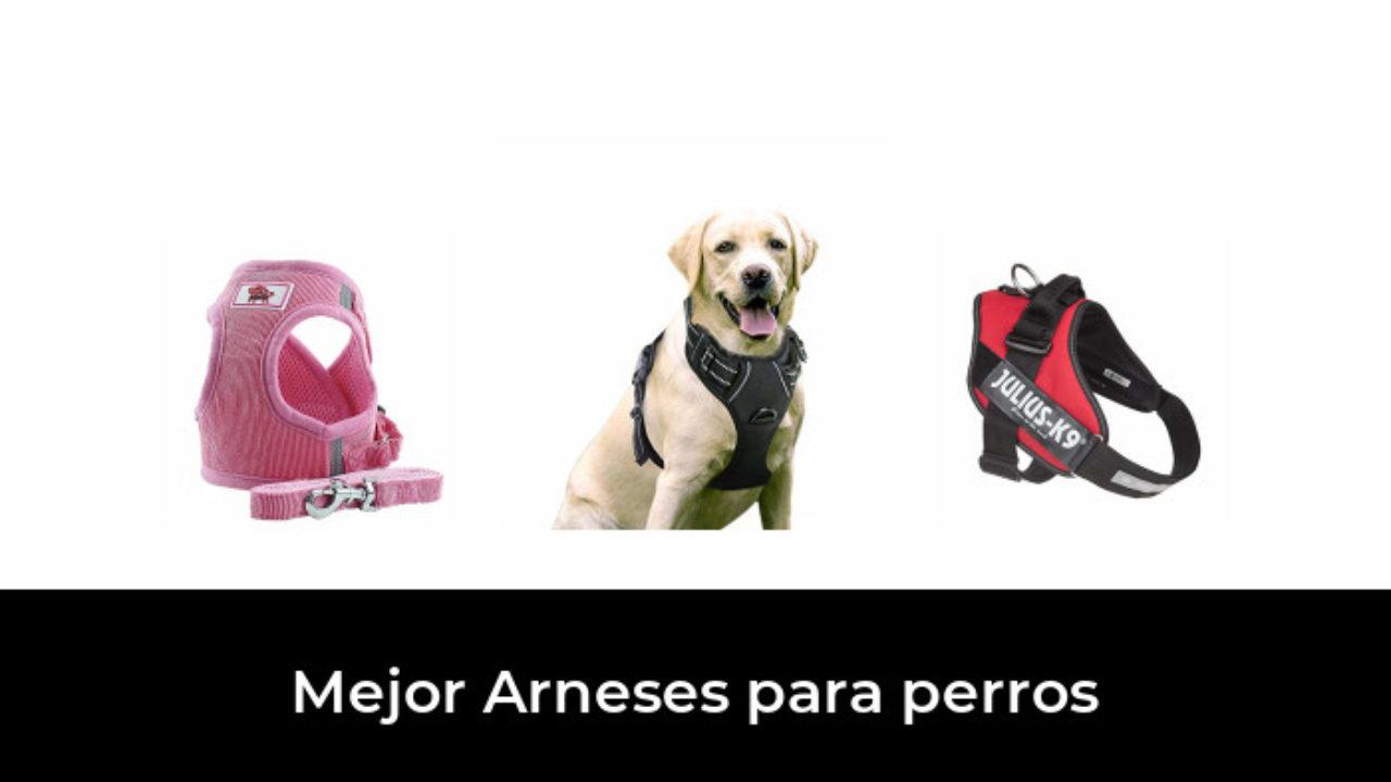 4.5 M Fuerte Correa retráctil perro mascota Caminando Plomo Gancho Soporte de bloqueo de hasta 18 kg